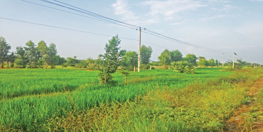 Empty Land  |  17km From Phnom Penh National Road 3