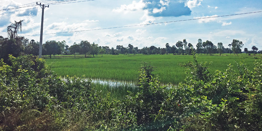 Land For Sale | 49km National Road 3 From Phnom Penh