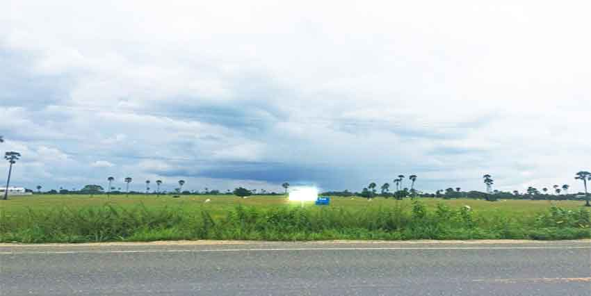 19 Km From PP| Land For Sale